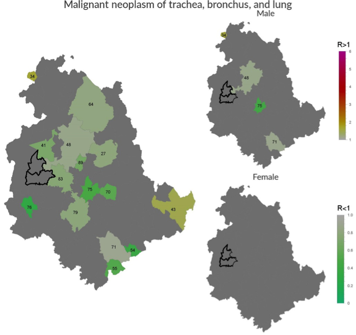 Incidence of malignant neoplasm of trachea, bronchus, and lung in Umbria Region.