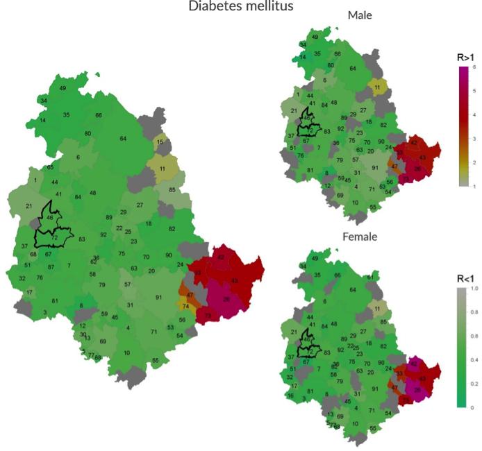 Incidence of Diabetes mellitus in Umbria Region