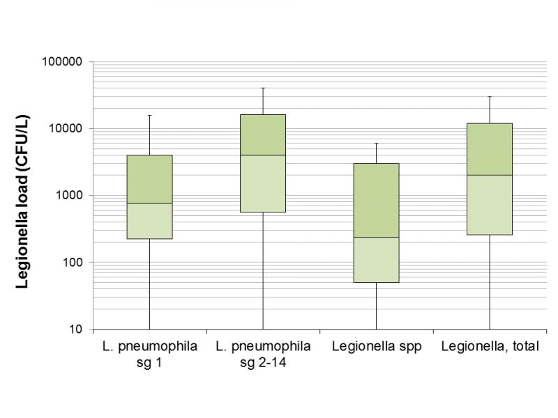 Figure 1 - Legionella load in samples found positive for Legionella based on the serogroup or species.